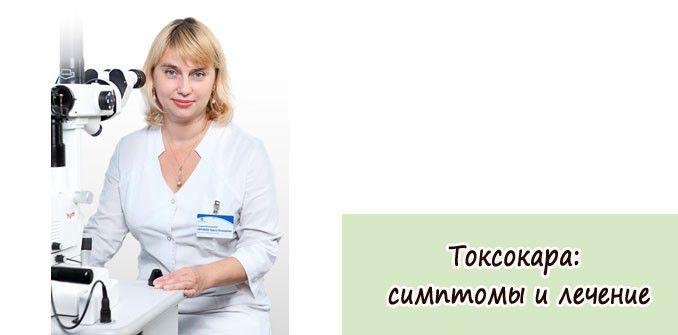 Токсокара симптомы, лечение и профилактика