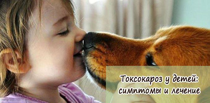 Токсокароз у детей симптомы и методы лечения