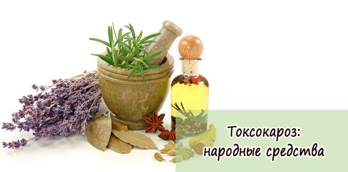 Токсокароз лечение народными средствами