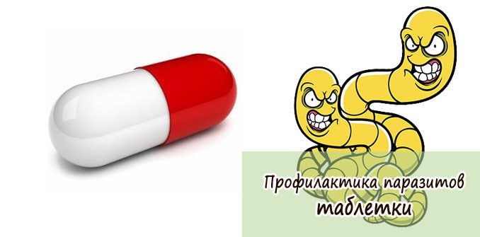 профилактика паразитов у человека таблетки