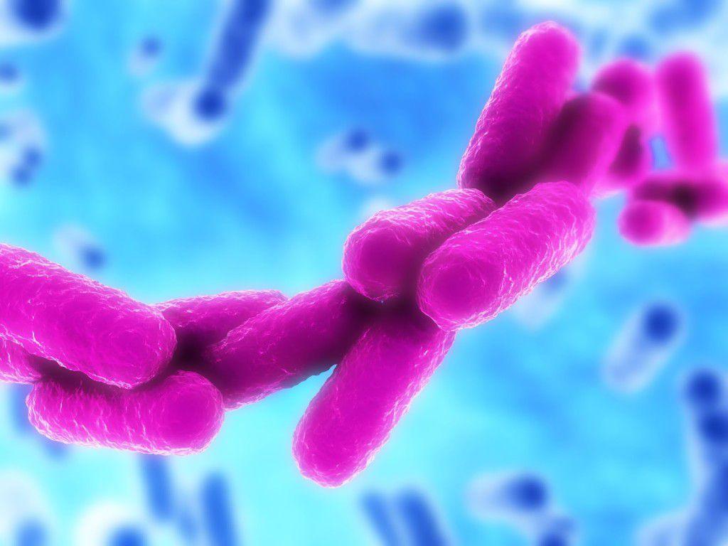 bakteriya-klebsiella-u-detey