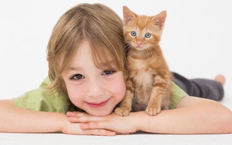 deti-s-toksoplazmozom
