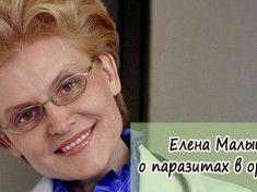 Елена Малышева о паразитах